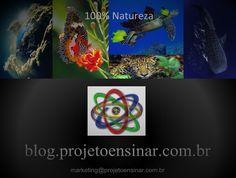Visite o Blog - Projeto Ensinar