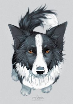 Wonderful Cost-Free Border Collies australian shepard mix Thoughts A National boundaries Collie hails through the borderlands associated with The united kingdom plus Scotland (h. Perros Border Collie, Border Collie Art, Animal Sketches, Animal Drawings, Cute Drawings, Dog Drawings, Cartoon Dog Drawing, Anime Animals, Animals And Pets