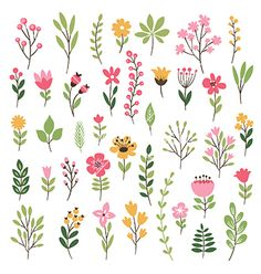 Colorful floral collection with leaves and flowers vector 4383224 - by Lenlis on. - Colorful floral collection with leaves and flowers vector 4383224 – by Lenlis on VectorStock® Co - # Pattern Design Drawing, Flower Pattern Drawing, Flower Pattern Design, Flower Patterns, Flower Designs, Flower Drawings, Design Patterns, Design Ideas, Pattern Ideas