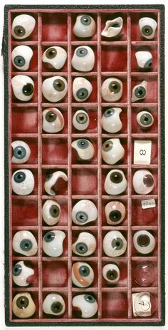 Glass eye case / collection ???