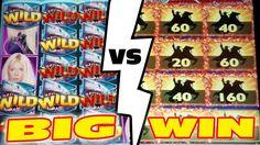 WHO WILL WIN?    SHARKNADO vs ZORRO    THE NOSY NEIGHBOR #lasvegas #vegas #casino #slots #win #winning #winner