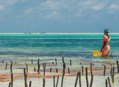 What to see in #Zanzibar #Africa #travel // (c) TravelAge West (c) Bob Demyan
