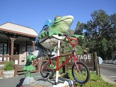 And yes, Angels Camp is also home to the famous Calaveras County Frog Jumping Contest.  Whoop! Whoop!