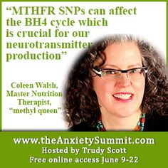 """MTHFR SNPs can affect the BH4 cycle - crucial for neurotransmitter production""  ~ Coleen Walsh ""methyl queen"" www.theanxietysummit.com"