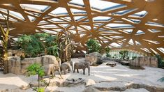 markus schietsch architekten caps elephant sanctuary with timber geodesic roof in zurich The Zoo, Zoo Project, Zoo Park, Zurich, Zoo Architecture, Architecture Graphics, Elephant Zoo, Zoological Garden, Elephant Sanctuary