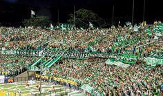 Ultras Football, Rey, Club, Facebook, Sport, Soccer, World, Athlete, Green