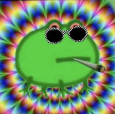 Aesthetic Memes, Aesthetic Art, Weird Pictures, Reaction Pictures, Peppa Pig, Foto Meme, Funny Frogs, Picture Icon, Green Frog