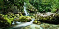 JUNGLEFLOW - Slovenia / Alps  Hidden in the mostly untouched forests of the Triglav Nationalpark in the Slovenian Alps an enormous beauty is flowing above mossy cascades. The water looks so inviting but it was bitterly cold due to the snowmelt at higher elevations.