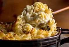 White Macaroni and Cheese by Melissa Clark