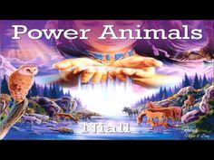 ♫ Shamanic Music   Native American Indians Spiritual Shaman Music - YouTube