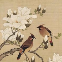 Chinese Gongbi painting_NO 005 Korean Painting, Japanese Painting, Chinese Painting, Chinese Art, Art Asiatique, Korean Art, Japanese Prints, Japan Art, Ink Painting