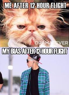 so true! <- just how the fuck do they stay flawless every time they get off the plane? Kdrama Memes, Funny Kpop Memes, G Dragon, Bts, All About Kpop, Daesung, Bigbang Gd, Jiyong, Block B