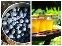 Healthy Recipes, Healthy Foods, Blueberry, Beekeeping, Plants, Medicine, Syrup, Canning, Health Foods