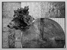 Grafika | Andrzej Olczyk | malarstwo, grafika, rysunek, fotografia przyrodnicza