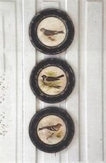 Round Picture Frames with Vintage Style Bird Prints Set of 3 Park Hill Collection Fresh Farmhouse, Antique Farmhouse, Farmhouse Decor, Urban Farmhouse, Farmhouse Style, Farmhouse Interior, Look Vintage, Vintage Birds, Vintage Decor