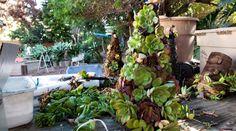 Succulent Christmas Tree Tutorial - BoredMom Succulent Tree, Succulent Planter Diy, Diy Planters, Planting Succulents, How To Make Christmas Tree, Christmas Crafts, Centerpieces, Xmas Trees, Backyard