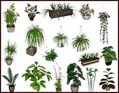 Decor Plant Set nr.4 by Clio - Free Sims 3 Decor Downloads Clio Sims3 Custom Content Caboodle - Best Sims3 Updates and Finds