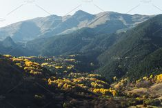 Mountain autumn landscape with colorful forest and high peaks. Epic scene with coniferous and deciduous forest and high peaks. Mountain Landscape, Scene, Autumn, Mountains, Nature, Travel, Color, Colour, Naturaleza