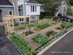 This front yard landscaping idea uses every inch of yard space, right up to the curb. Nice vegetable garden!