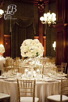 champagne linens and chivari chairs