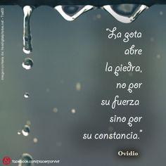 """""""La gota abre la piedra, no por su fuerza sino por su constancia."""" Ovidio #frase #inspiracion"""