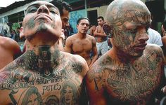 If you see someone with a tat that reads: MS13, MS or just 13, you're likely facing a member of the La Mara Salvatrucha gang. Some of the members originated in Los Angeles as El Salvadoran immigrants who had associations to guerrilla fighters in the El Salvadoran civil war. Now their chapter is 60,000+ strong and spans the U.S., Canada, Mexico and Central America. The U.S. Treasury has even listed them as a Transnational Criminal Organization, which translates into being a mafia!