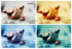 35 Free and Fresh Photoshop Actions