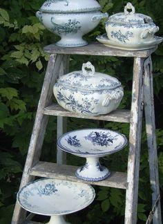 Porcelain Soup Tureens on vintage ladder blue white china