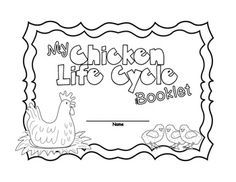 FREE Chicken life cycle interactive wheel: cut, paste and