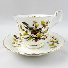 "Royal Albert ""Robin"" Woodland Series Tea Cup and Saucer, Vintage Bone China"