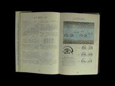 Codex Seraphinianus by Luigi Serafini is not ordinary book. Prepare for weirdness.
