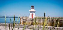 18 Reasons Why a Nova Scotia Vacation is for the Dogs | NovaScotia.com