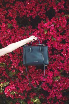 pretty little fawn   LA Fashion + Lifestyle Blogger: CHANGES