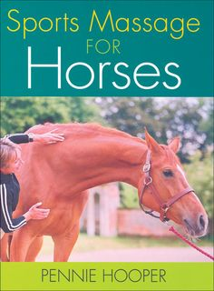 The basics of equine sports massage using simple techniques such as compression and cross-fiber friction,