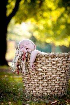 baby in a basket; outdoor newborn photography; newborns in nature