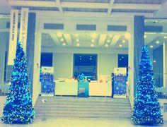 Alberi di Natale • Christmas Tree #Natale #Albero #Illuminazione #Oltreilgiardino www.oltreilgiardi...