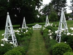 Garden with white flowers, tuteur and bench