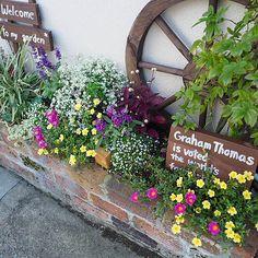 Garden Landscaping, Outdoor Spaces, Floral Wreath, Gardening, Wreaths, Landscape, Plants, House, Decor