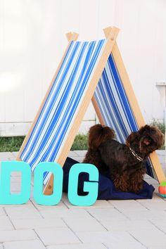 Dog Tent DIY