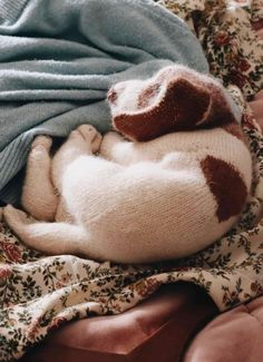 puppy knitting pattern by claire garland of dot pebbles knits - save 40% on Etsy with our unique discount code and get expert tips from Claire herself #puppy #knittingpattern #dog #discount #download #knitting Knitting Patterns Free, Hand Knitting, Willow Weaving, Diy Step By Step, Felted Slippers, Dog Pattern, Etsy Uk, Craft Tutorials, Fabric Crafts