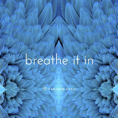 When a wave of fear hits, the key is to breathe and receive.