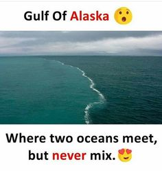 New Nature Photography Ocean Perspective Ideas Amazing Places On Earth, Beautiful Places To Visit, Cool Places To Visit, Places To Travel, Wow Facts, Wtf Fun Facts, Two Oceans Meet, Amazing Photography, Nature Photography