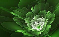 #1473733, fractal category - pictures of fractal