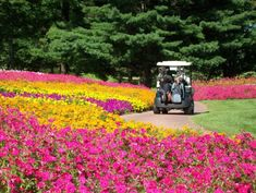 SentryWorld Sports Center and its golf course is one of the prettiest golf courses around. Famous Golf Courses, Public Golf Courses, St Andrews Golf, Golf Chipping Tips, Augusta Golf, Coeur D Alene Resort, Golf Course Reviews, Sports Complex, Play Golf