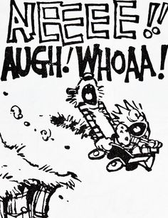 Calvin and Hobbes, DE's CLASSIC PICK of the day (7-28-14)  AIEEEE!! AUGH! WHOAA!