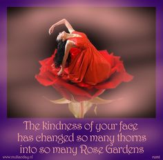 The kindness of your face has changed so many thorns into so many Rose Gardens - rumi