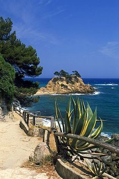 Path leading to Cap Roig, Costa Brava, Catalonia, Europe