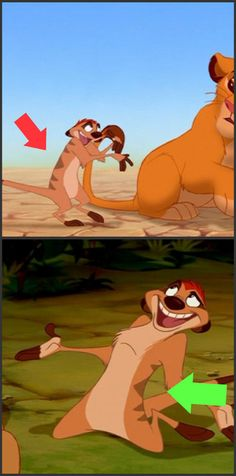 The number of stripes on Timon's back alternate between shot from five to six.