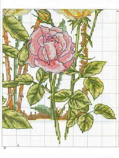 Lavores da Ana Paula: Rosas