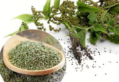 New Recipes, Recipies, Survival, Herb Garden, Herbal Remedies, Afternoon Tea, Food Storage, Allrecipes, How To Dry Basil